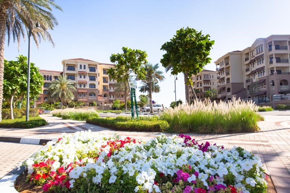 Community - Amazing 3BR Apt Available in Saadiyat Beach Residences for rent!